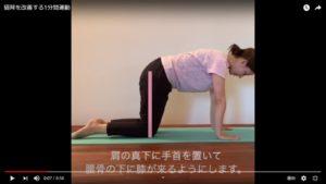 肩の下に両腕、腰の下に膝がくるようにして四つん這いになる